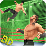 Tag Team Wrestling Superstars 2019 Hell In Cell APK MOD Unlimited Money