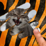 Scratch and guess the animal  APK (MOD, Unlimited Money) 9.5